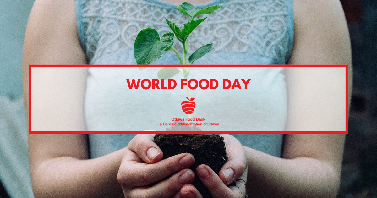 World Food Day 2020 Food insecurity action donation hunger