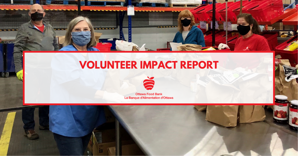 volunteer impact report